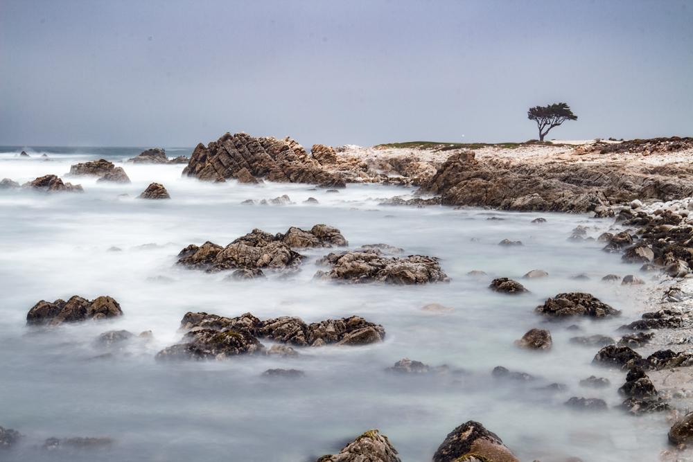 17 Mile Drive Monterey - Pebble Beach